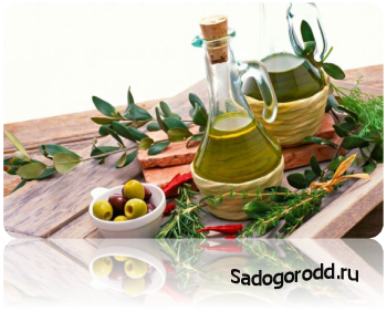 Удивительные преимущества оливкового масла.