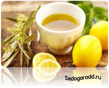 Оливковое масло поможет от запоров.