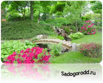 Достойные идеи преобразования небольших садов.